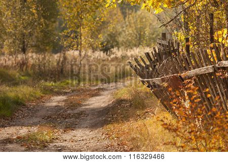 old wooden fencing