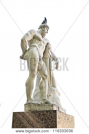 Pigeon Sits On The Head Of Hercules Statue