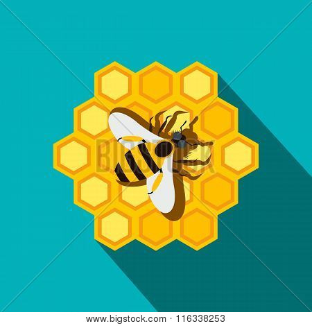 Honeycomb and bee flat icon