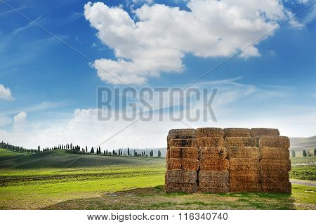 Bales Of Wheat And Tuscany Landscape Panoramic View, Italy