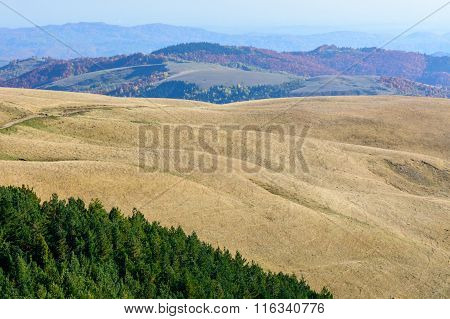 Mountain Landscape Backgroud On Fall. Horizontal Mountain Autumn Landscape With Colorful Forest, Gre