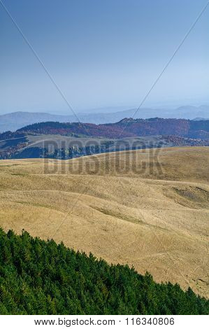 Mountain Landscape Backgroud On Fall. Vertical Mountain Autumn Landscape With Colorful Forest, Green