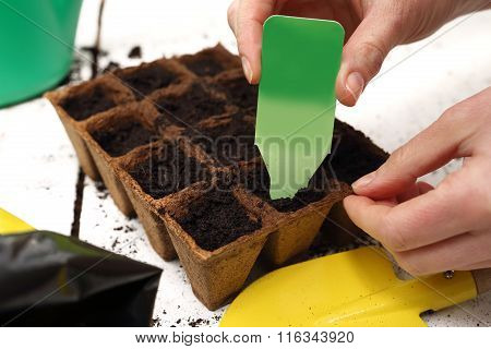 Sowing of crops in the home, peat pot
