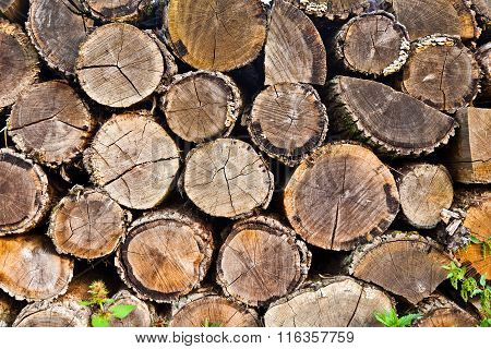 Pattern Of Woodpiles