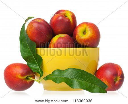 Fresh Ripe Nectarines