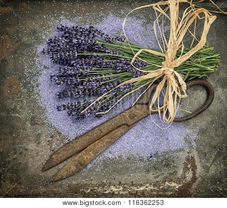 Lavender flowers over rustic metal background. Fresh blossoms with shabby chic style decorations