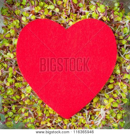 Big Red Heart On Green Sprout Texture Background