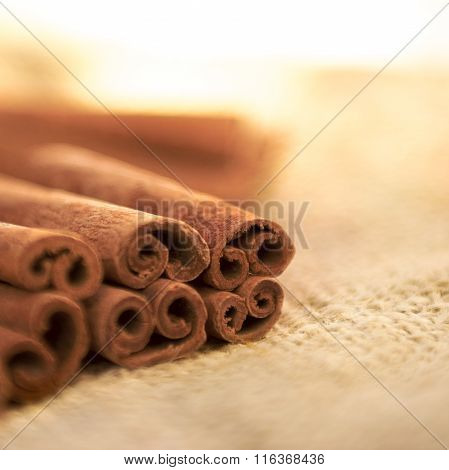 Cinnamon Sticks Warm Soft Focus