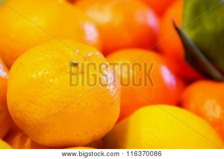 Orange On A Bunch Of Fruit