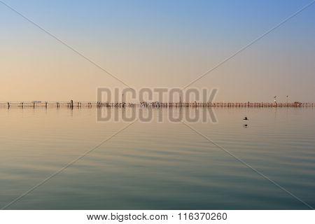 Chioggia Lagoon