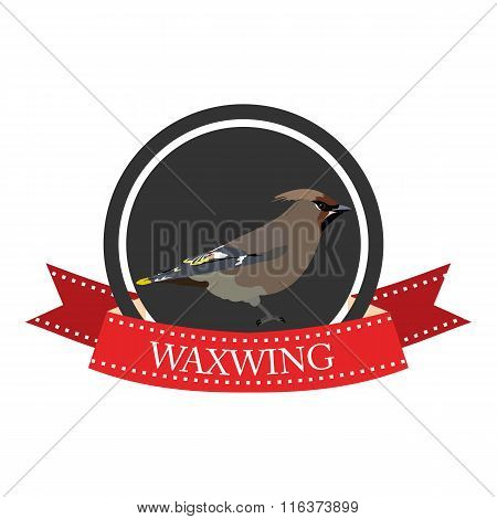 Flat Icon Waxwing