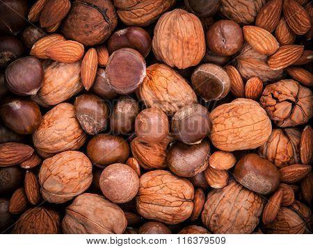 Background From Different Kinds Of Nuts In Shells ,cashew, Almond, Walnut, Hazelnut, Pistachio, Haze