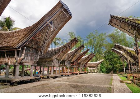 Tongkonan Traditional Rice Barns And House