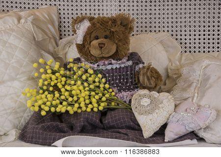 Teddy Bear's Eight Of March