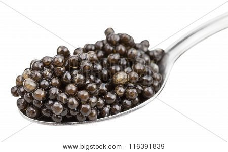 Metal Spoon With Black Sturgeon Caviar Isolated