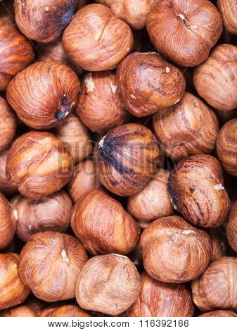 Dried Uncooked Hazelnuts Close Up