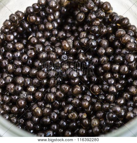 Above View Of Black Sturgeon Caviar In Glass Jar