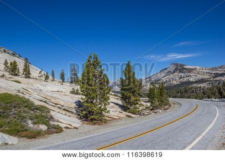 Tioga Pass Road In Yosemite National Park