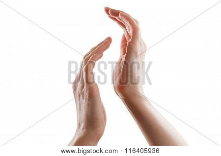 Beautiful Female Hands Isolated On White Background Applause