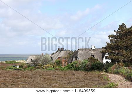 Thatched Roof Houses In The Braderup Heath On Sylt
