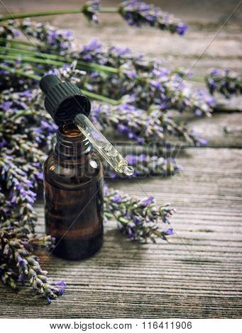 Perfumed Herbal Oil Essence And Lavender Flowers Vintage