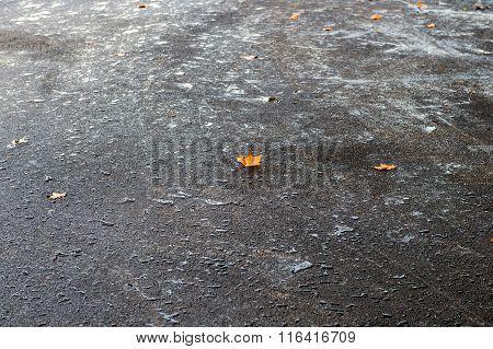 Modern Waterproof Fresh Posed Road Asphalt