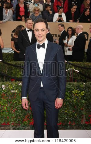 LOS ANGELES - JAN 30:  Jim Parsons at the 22nd Screen Actors Guild Awards at the Shrine Auditorium on January 30, 2016 in Los Angeles, CA