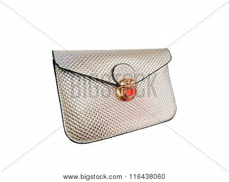 purse on isolated