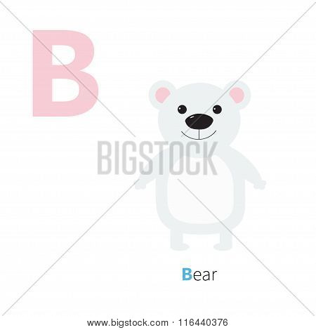 Letter B Bear White Polar Zoo Alphabet. English Abc Letters With Animals Education Cards For Kids Is