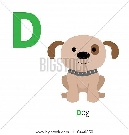 Letter D Dog Zoo Alphabet. English Abc With Animals Education Cards For Kids Isolated White Backgrou