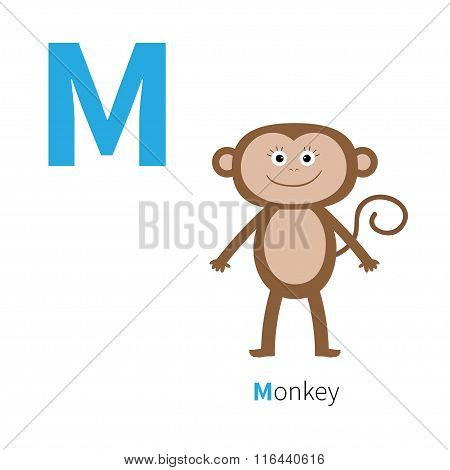 Letter M Monkey Zoo Alphabet. English Abc With Animals Education Cards For Kids Isolated White Backg