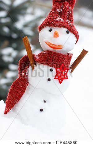 Snowman Wrapped Woolen Scarf And Cap, Winter Season Concept