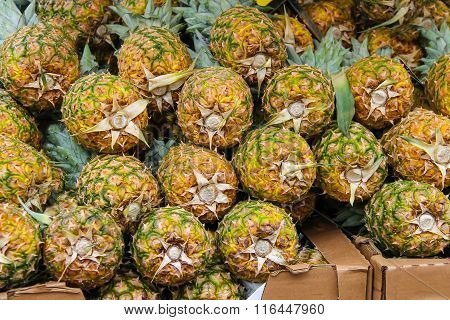 Fresh Pineapples For Sale In The Market