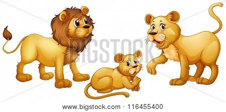 Lion family with cute little cub illustration