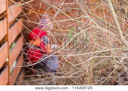 Bare Branches Of Bush Hide Little Girl