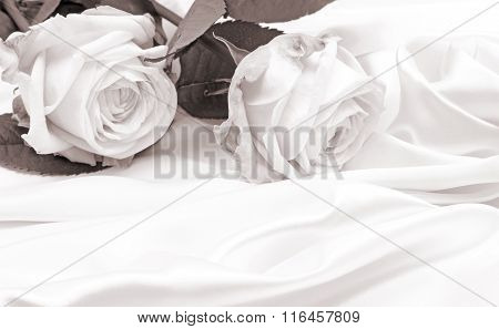 Beautiful White Roses On Silk As Wedding Background. In Sepia Toned. Retro Style