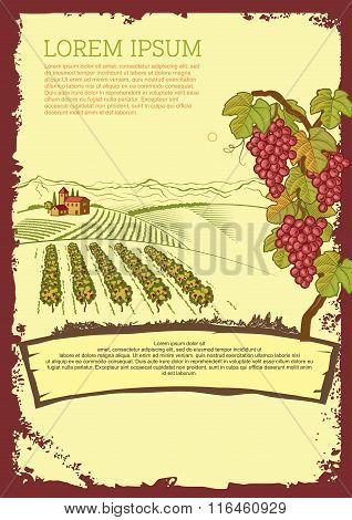 Vector Vintage Vineyard Associated Flyer Template Illustration