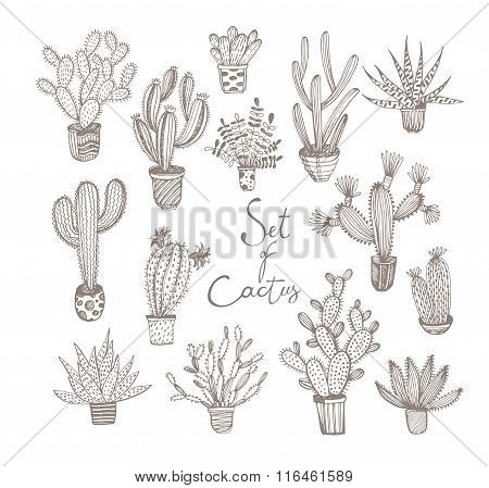 Collection Of Hand Drawn Cactus In A Pots.