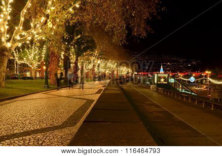 Madeira, Funchal by night