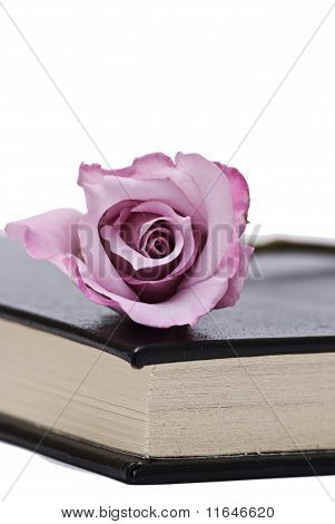 Books and roses.