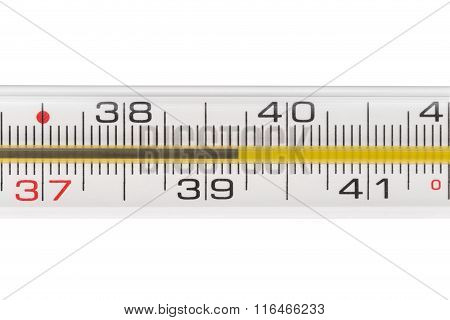 Quicksilver Thermometer