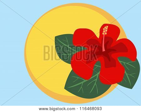 Vector Illustration Of Red Hibiscus Flower On Yellow Circle. No Mesh, Gradient, Transparency Used. O