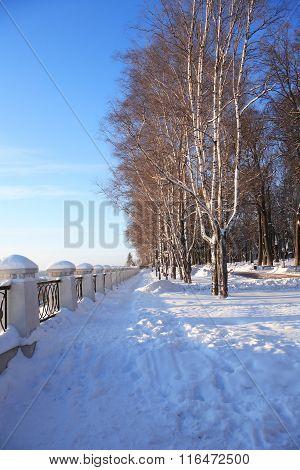 Winter Park Under Sun
