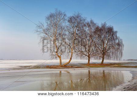 Snow Melting On The Fields. Warm Winter.