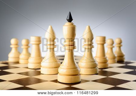 Chessmen King, Elephants, Rooks And Pawns Are Wedge