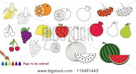 Fruit set. Big coloring book.