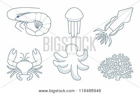 The outlines of sea creatures