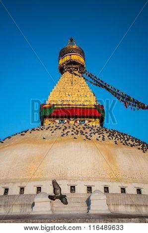 The Great stupa Bodnath