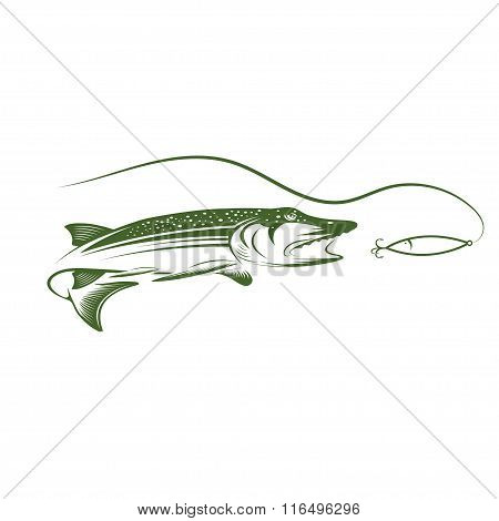 Pike And Lure Vector Design Template