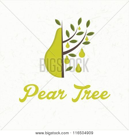 Illustration Pear Tree With Pear Fruit